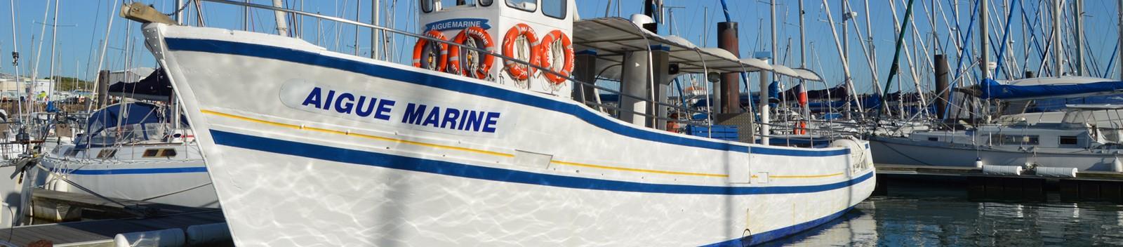 Aigue-marine-accueil2